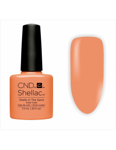 SHELLAC SHELLS IN THE SAND...